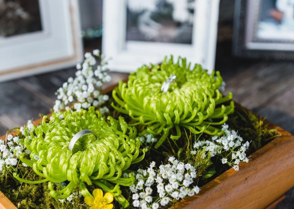 Ringkissen-Blumen-Heiraten-in-Rastede