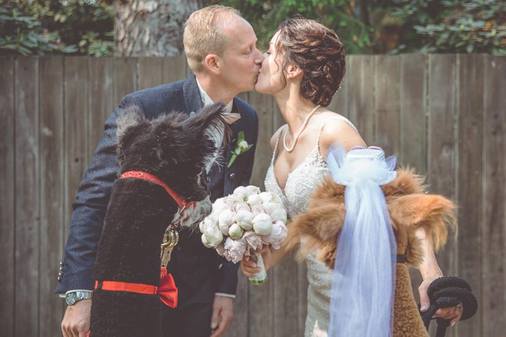 Brautpaar-mit-Alpaka-Kuss-Weddingplanner-Oldenburg-Gluecksverbreiter